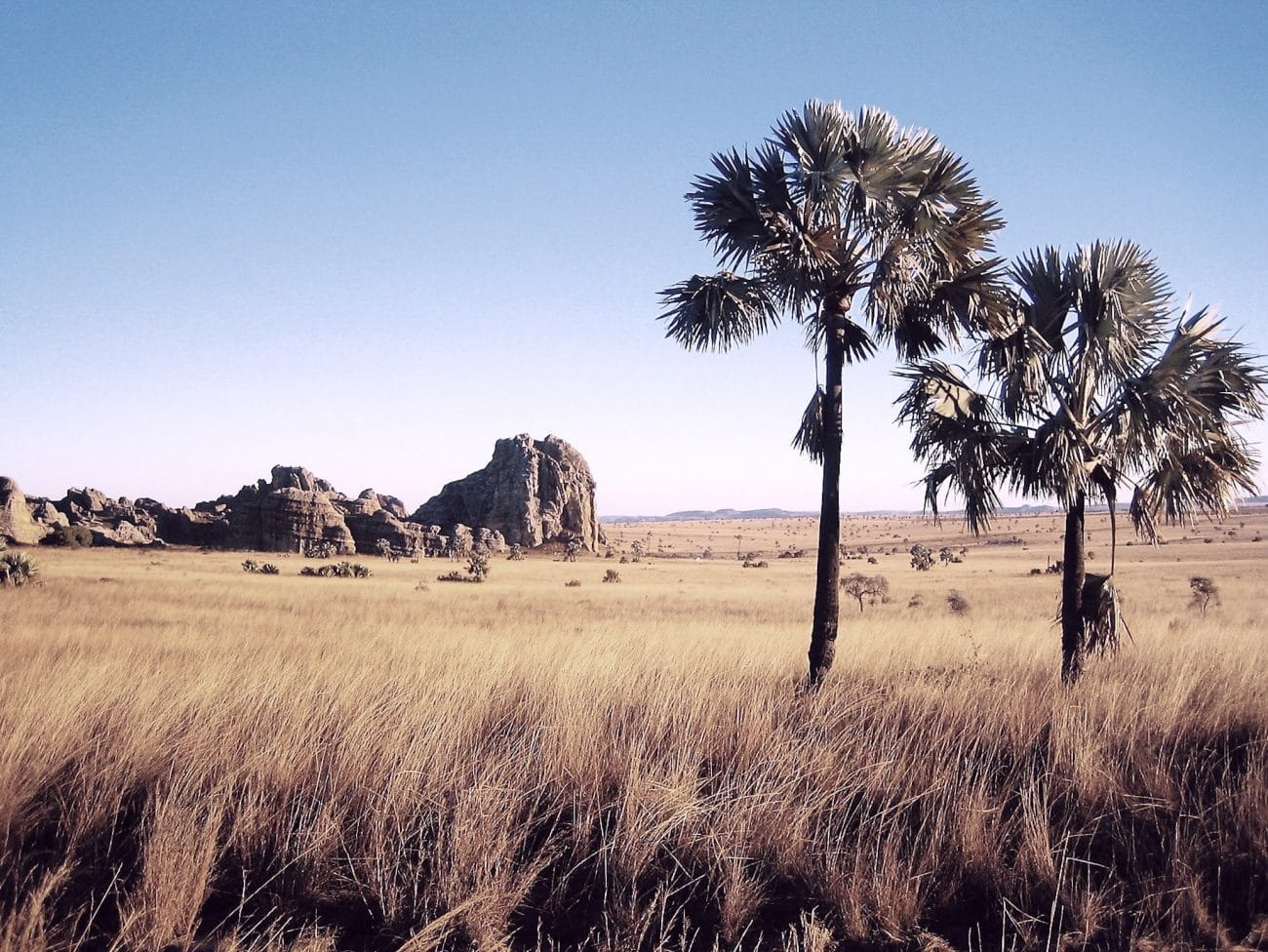 Plateau d'Ihorombe