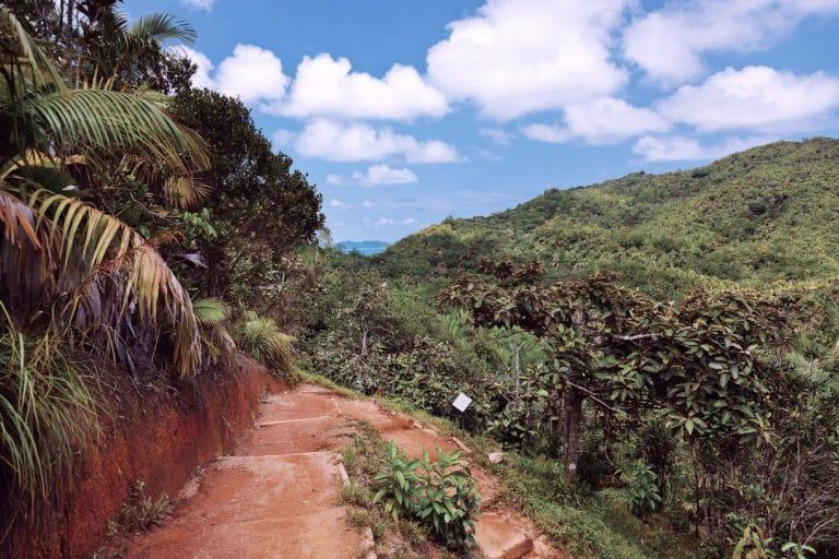 valle de mai